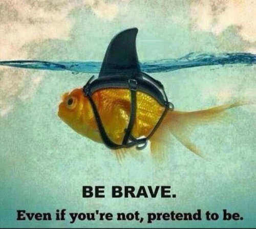 goldfish shark be brave even if you have to pretend