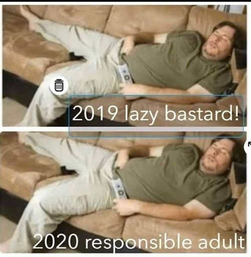 2019 lazy bastard 2020 responsible adult