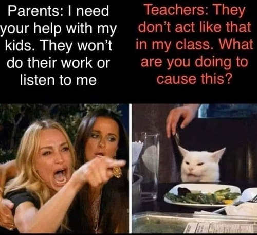 angry lady cat smudge parents need help with kids teachers they dont act like that in my class