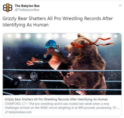 babylon bee grizzly bear shatters all pro wrestling records after identifying as human