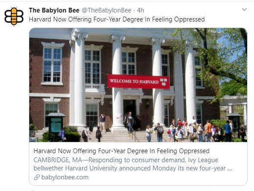 babylon bee harvard now offering 4 year degreee in feeling oppressed