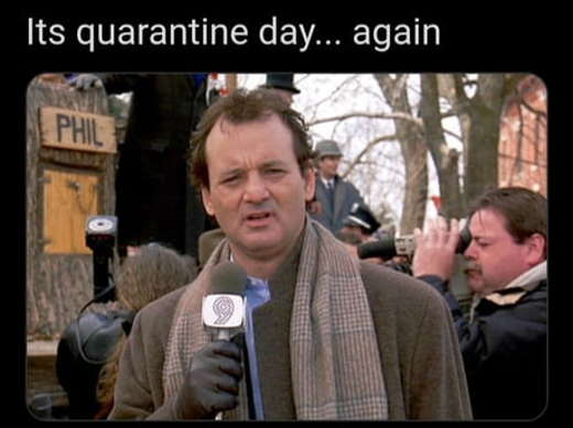 bill murray its quarantine day again groundhog