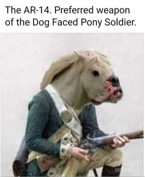 joe biden ar 14 preferred weapon of dog faced pony soldier