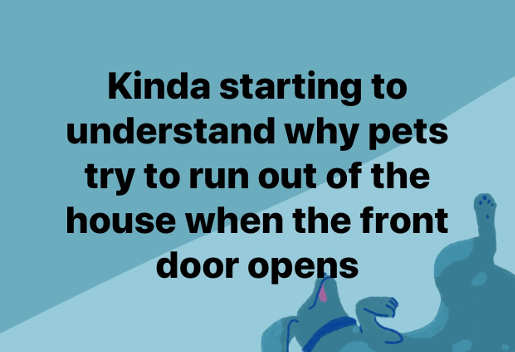 kinda starting to understand why pets try to run out of house when door opens