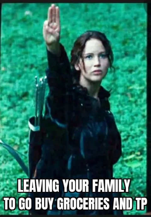 leaving your family to buy groceries and tip hunger games salute