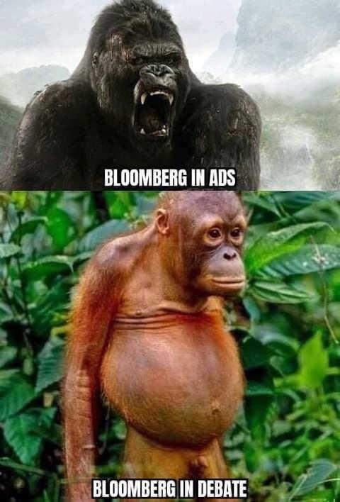 mike bloomberg in ads king king in debate chimp