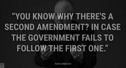 quote know why theres a 2nd amendment in case government fails to follow first one