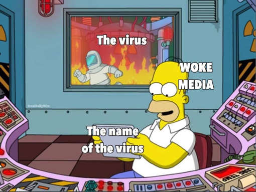 simpsons virus fire media name of virus