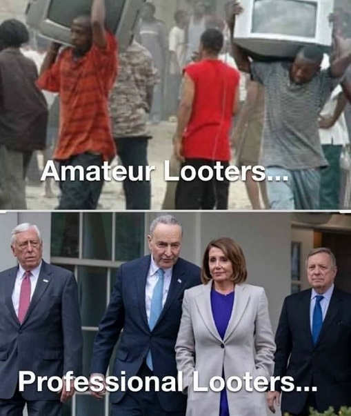 amateur looters professional democrats in congress