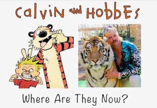 calvin and hobbers where are they now tiger king