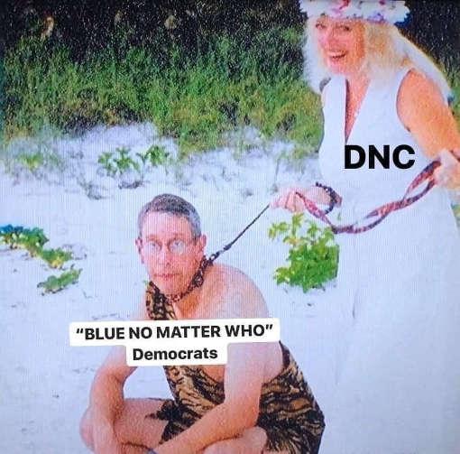 dnc blue no matter who democrats carole baskin husband