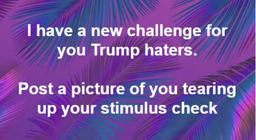 new challenge for trump haters post picture of you tearing up stimulus check