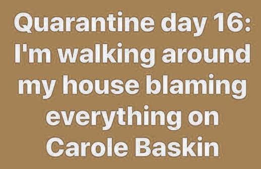 quarantine walking around house blaming everything on carole baskin