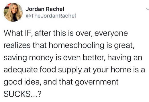 what if when over everyone realizes homeschooling great saving money better government sucks