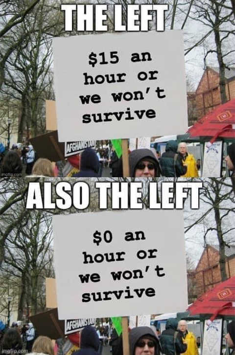15 dollars hour or we wont survive also the left 0 per hour sign