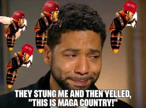 jussie smollett murder bees stung me yelled this is maga country
