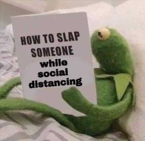 kermit how to slap someone while social distancing