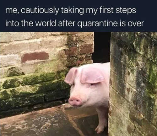 me cautiously taking my first steps into world after quarantine is over