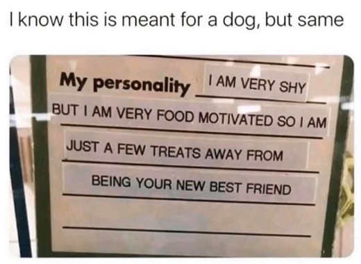 meant for dog but same food motivated shy treats away from new best friends