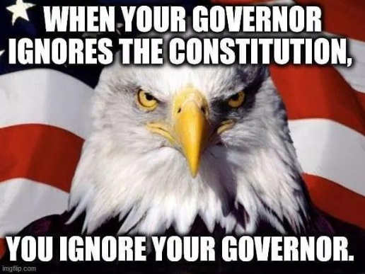 message when governor ignores constitution you ignore your governor