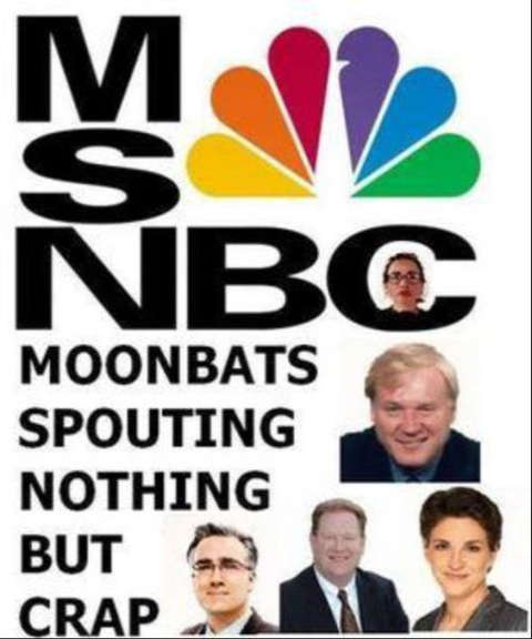 msnbc moonbats spouting nothing but crap maddow mathews olberman