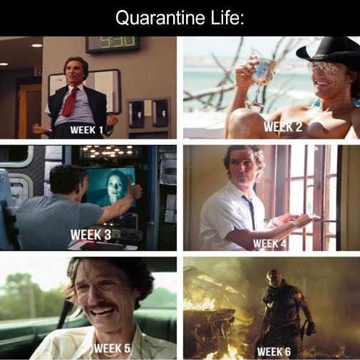 quarantine life mathew mcconahey weeks