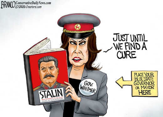 whitmer stalin book just until we find a cure blue state governor