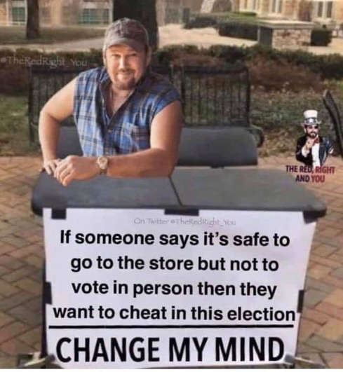 if someone says safe to go to store but not vote in person they want to cheat in election change my mind