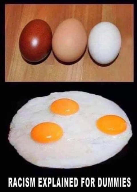 racism explained for dummies white brown egg same on inside