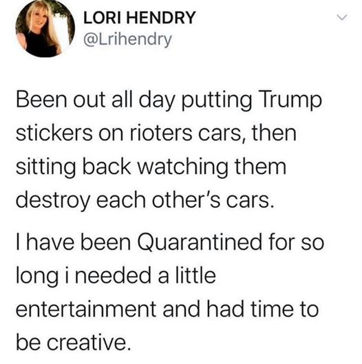 tweet lori hendry been out putting trump stickers on rioters cars watching them destroy each others had time to be creative