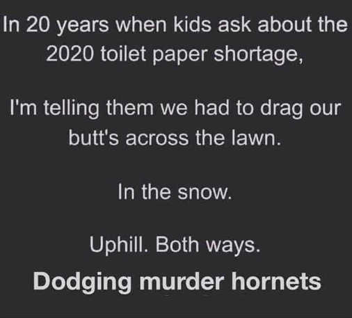 2020 in 20 years telling kids dragged butt across lawn both ways dodging murder hornets