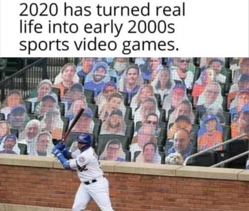 2020 turned life into early 2000s video games cardboard fans baseball