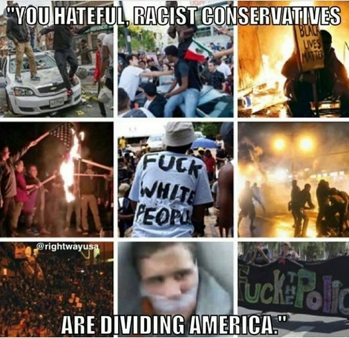 quote you hateful racist conservatives are dividing america rioters fuck white people police