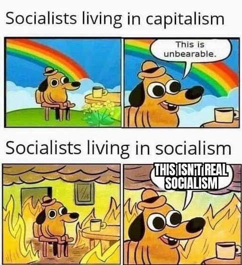 socialists living in capitalism unbearable in socialism isnt real fire