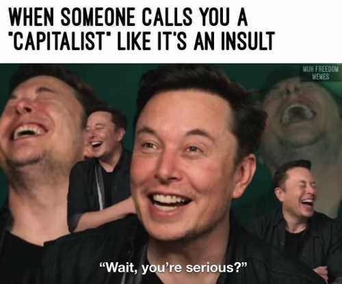 when someone calls you capitalist as insult elon musk laughing