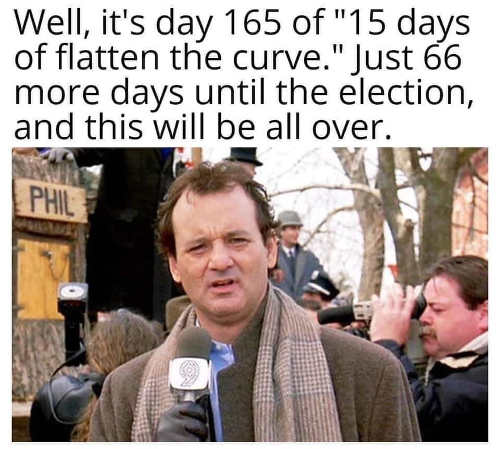 day 165 of 15 days to flatten the curve 66 days until election this will be over