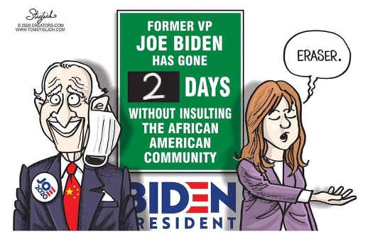 joe biden gone 2 days without insulting black people eraser please