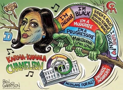 karma kamala chameleon harris moderate indian black biden racist assault
