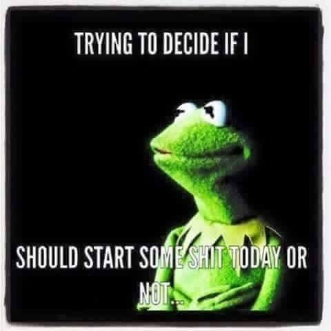 kermit trying to decide if i should start some shit today or not