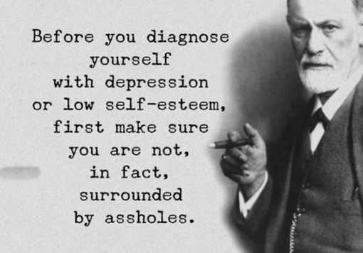 quote before you diagnose depression be sure youre not surrounded by assholes