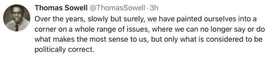 tweet thomas sowell flowly painted into corner by political correctness