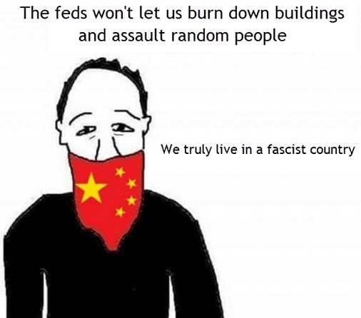 antifa blm feds wont let us burn down buildings assault random people truly fascist country