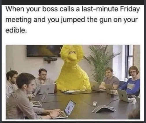 big bird when boss calls last minute friday meeting jumped gun on edible
