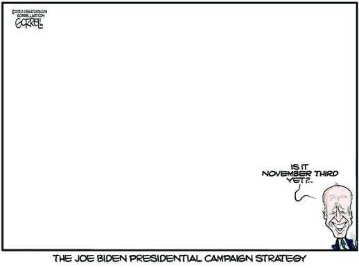 joe biden campaign strategy blank november 3rd yet