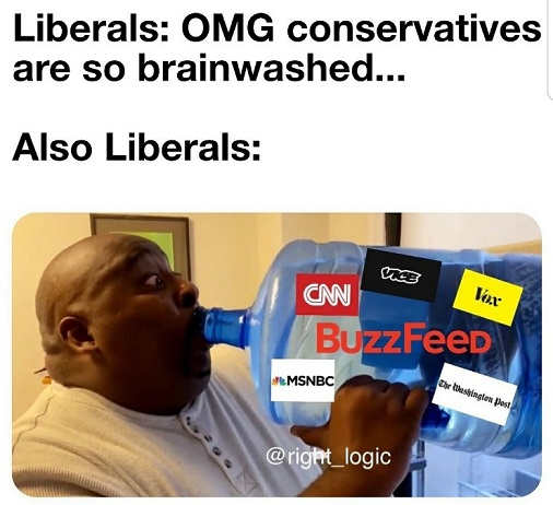 liberals omg conservatives are brainwashed also drinking cnn msnbc post nyt buzzfeed vox vice