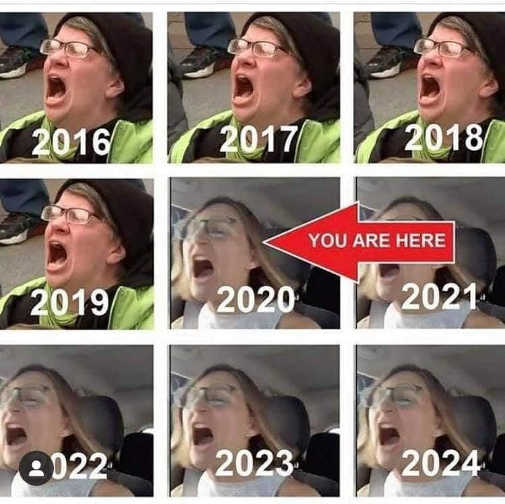 liberals screaming by year you are here 2020