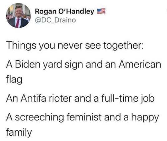 tweet things you never see together biden yard sign american flag antifa rioter job feminist happy family