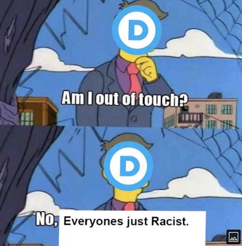 democrats am i out of touch no everyone is racist