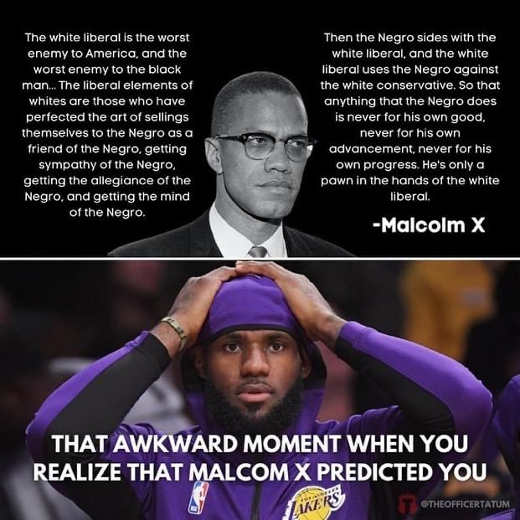 quote malcolm x white liberal taking advantage lebron james types