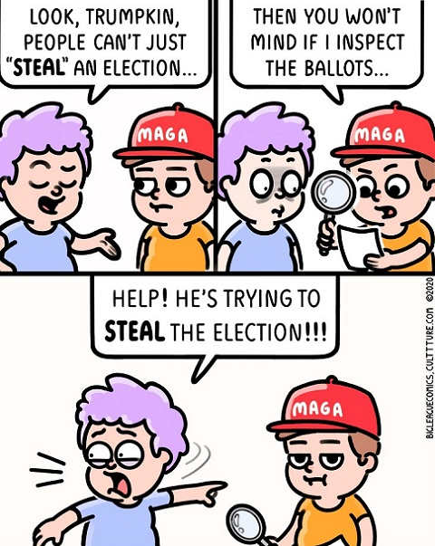 cant steal the election maga examine the ballots help trying to steal